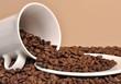 Coffee bean spill