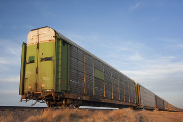 train of old stock rail cars for livestock transportation