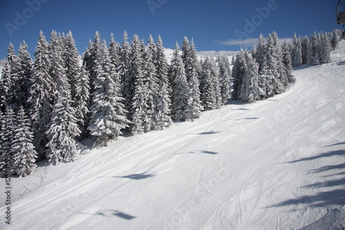 Empty piste in the morning on Kopaonik, Serbia