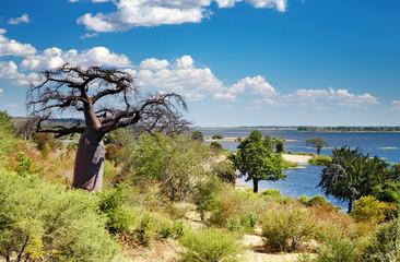 Chobe river in Botswana