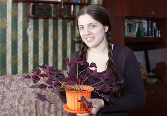Gardener with flowering pot plant