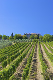 Tuscan vineyard with a Tuscan Villa in a beautiful landscape poster