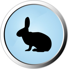 Rabbit web button