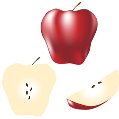 Whole apple, slice, and wedge - vector illustration