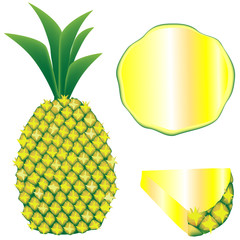 Whole pineapple, slice, and wedge - vector illustration
