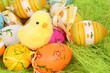 Little yellow Easter chicken and  colorful Easter eggs