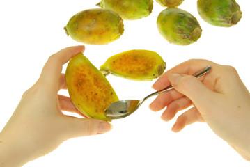 Kaktusfeige - prickly pear 26