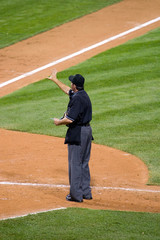 Baseball umpire at home plate