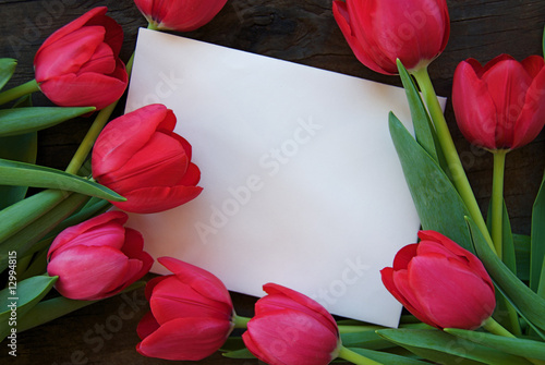 Deurstickers Tulp White envelope surrounded by tulips