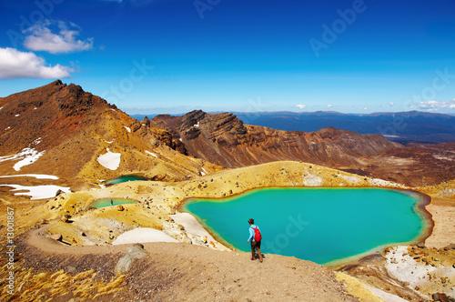 Tongariro National Park, New Zealand - 13001867