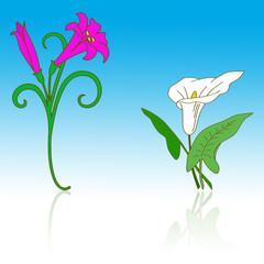Flores web 2.0