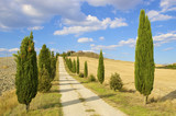 a typical Tuscan landscape in Italy with a villa and cypresses poster