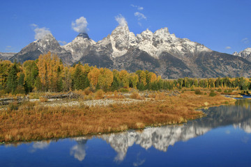 Schwabacher Landing Reflection