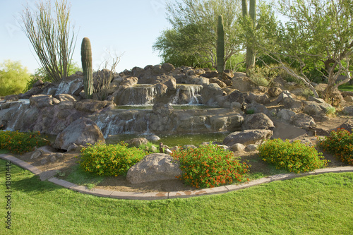 canvas print picture Desert Landscaping