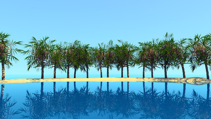 tropic travel background
