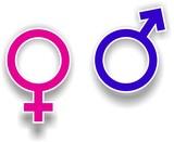 masculin feminin poster