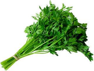 Parsley, Celery, Watercress - Salsa e Aipo