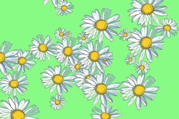 Daisies on green - digital animation