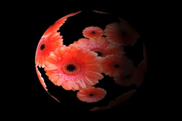 Red flowers in a sphere - digital animation