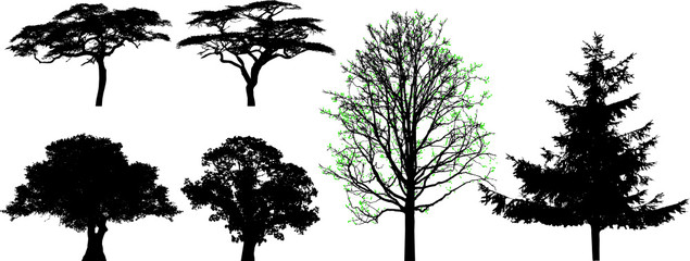 trees - vector set, for your design