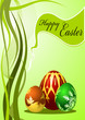 Vector Colorful Easter Eggs on green background