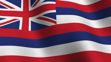 Seamless loop of the Hawaii state flag