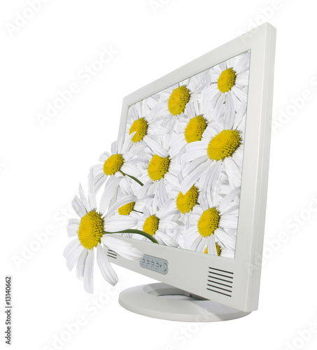 A monitor with daisies