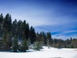 Winter landscape ,Serbia,Kopaonik poster