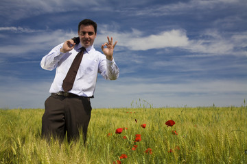 Businessman in a spring field