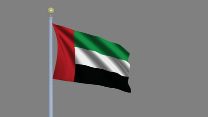 Flag of the United Arab Emirates with alpha matte for isolation