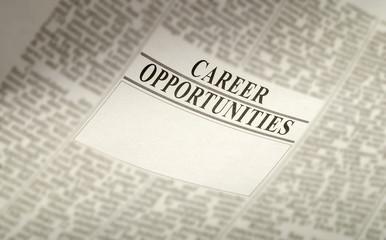 employment - career