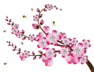 Cherry Blossoms and Bees