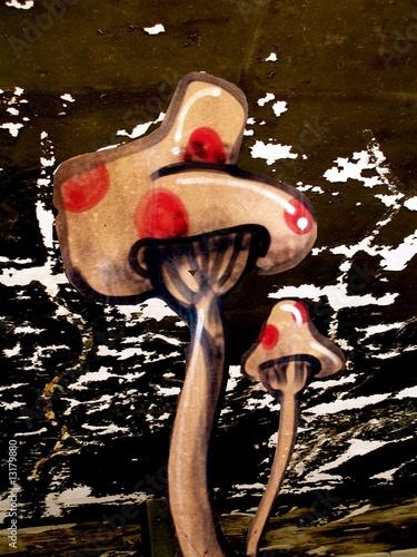 graph champignon amonite phalloïde © sylvia pasquet