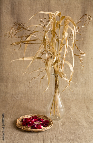 Dry reed and rose-petals over canvas background