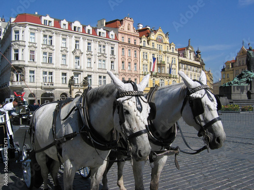 A team of horses at the Old tows Square.