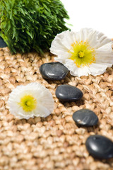 Zen stones with white flowers on a grass matte