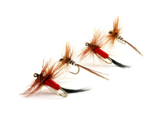 Four small trout flies