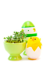 easter egg and cress isolated on white