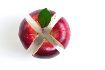 Cross section apple