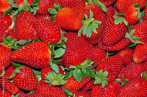 Garden Strawberry 4