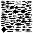 66 pieces of vectoral fish silhouettes.