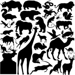 30 pieces of vectoral wild animals silhouettes.