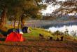 Camping - 13314255
