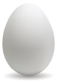 Big white egg