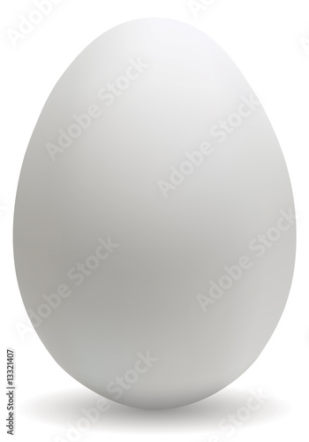 Big white egg - 13321407