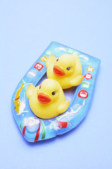 Rubber Ducks on Inflatable Boat