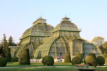 Palm house in Schonbrunn Palace's garden, Vienna