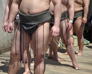 Lutteurs de sumo avant le combat
