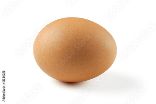 Brown egg - 13386053