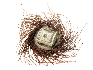 Cash in nest